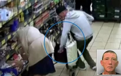 Brighton thief targeted woman, 86, who died two months later