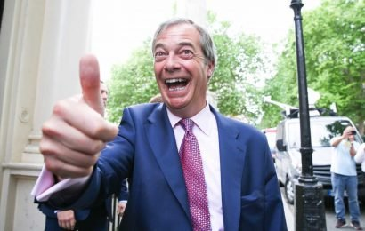 What is The Brexit Party and what are the policies of Nigel Farage's new party?
