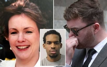 Son of murdered civil servant brands his mother's sex predator killer 'an evil being' as he confronts him in court