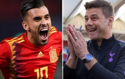 Pochettino 'convinces Ceballos to join Spurs' as Real Madrid midfielder sold on North London transfer – The Sun