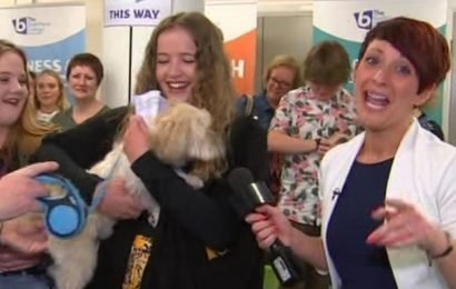 Nervous students opening A-level results live on GMB given therapy dog to stroke