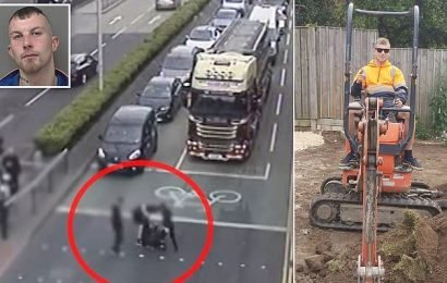 Labourer hailed a 'hero' for 'lamping' a mugger who robbed a pensioner