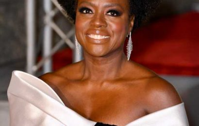 Viola Davis Was Just Perfectly Cast As Michelle Obama In A New Showtime Series