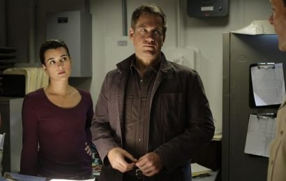 'NCIS' Star Michael Weatherly Plays Coy When Asked About A Season 17 Reunion Between Ziva And Tony