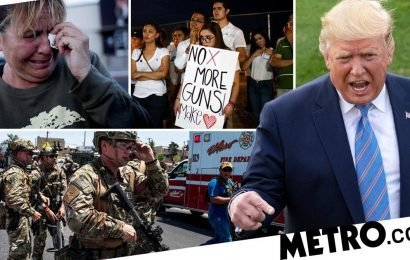 The US has had 252 mass shootings this year alone