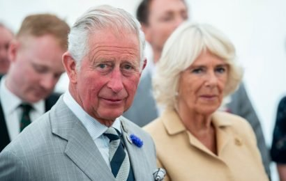 Did Prince Charles Have Another Mistress Besides Camilla?