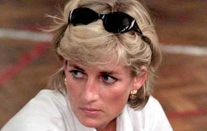 'Fatal Voyage: Diana Case Solved' Reveals the Truth Behind Princess Diana's Death