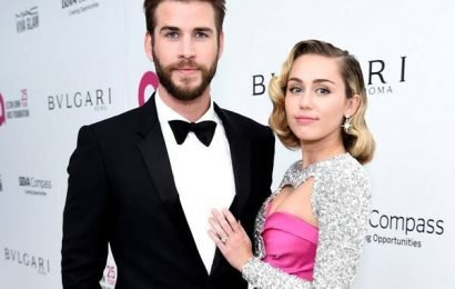 What Miley Cyrus & Liam Hemsworth's Families Think of Possible Divorce