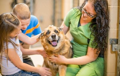Delaware Recognized as the First and Only No-Kill State for America's Shelter Animals