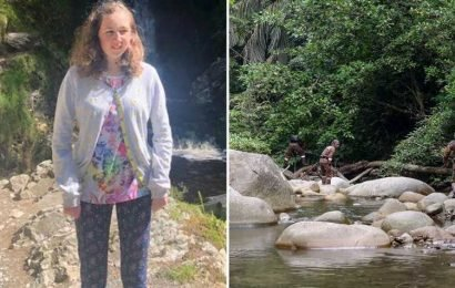 Nora Quoirin search team expert says it was 'impossible' for her to reach jungle ravine where she was found starved to death as family demands answers – The Sun