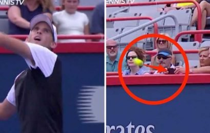 Dominic Thiem smashed a fan's phone out of their hands with a wayward shot at the Rogers Cup