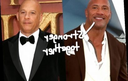 Dwayne 'The Rock' Johnson Calls Vin Diesel His 'Brother' Years After Their 'Fast