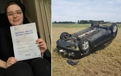 Learner driver concussed in crash passes test the very next day