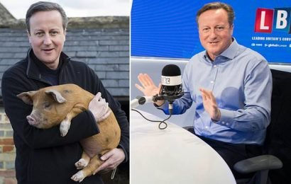 David Cameron reveals he reacted with 'hilarity' to pig claim