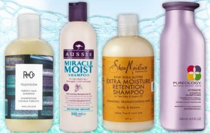 Best Shampoo for Thick Hair 2019 | The Sun UK