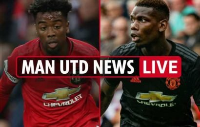 5.30pm Man Utd news LIVE: Pogba injured, Angel Gomes wanted in first team, Darmian joins Parma – The Sun