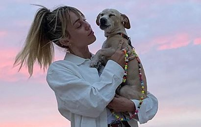 Miley Cyrus Hikes and Gets Massage With Her Dog Bean: Photos