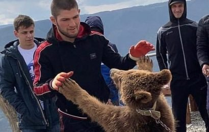 UFC legend Khabib Nurmagomedov urged to stop fighting bears and change 'loathsome' attitude to animals – The Sun