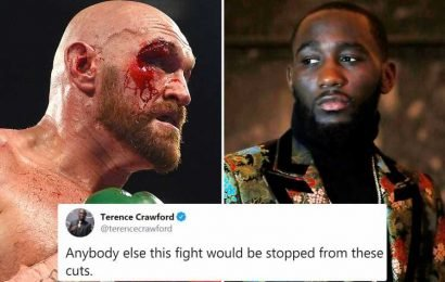 Tyson Fury fight with Otto Wallin would have been stopped due to cuts if it was 'anybody else' says Terence Crawford – The Sun