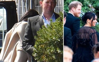 Meghan Markle and Prince Harry skip Misha Nonoo's post-wedding bash to head home and collect Archie before Africa tour – The Sun