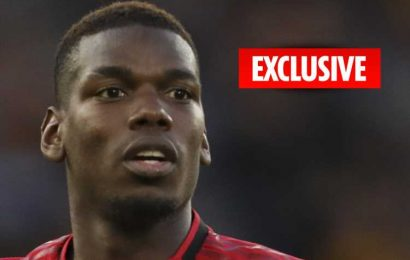 Paul Pogba splashes out £15k on guard dog from specialist firm after being targeted by fuming Man Utd fans – The Sun