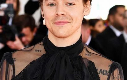 Did Harry Styles Just Get a Bowl Cut? See Why Fans Are Flipping Out Over His New Hair Look