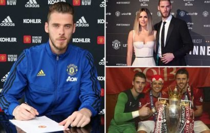 David De Gea, the Man Utd hero who drives a van, endured a horror World Cup and has a pop star WAG… who wouldn't live in Manchester – The Sun