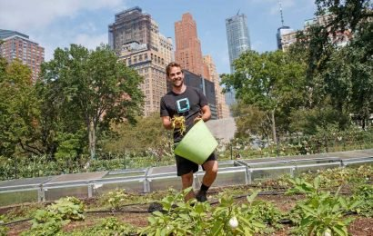 Urban farms are sprouting up all over NYC