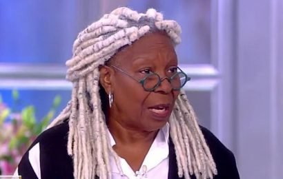 Whoopi Goldberg Debuts Long White Dreadlocks On 'The View' — See New Hair Makeover Pics