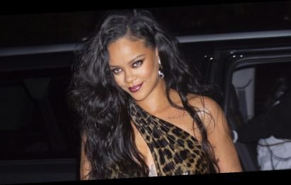 Rihanna goes wild in leopard print dress for launch of visual autobiography