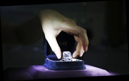 Japanese police hunting thieves who stole a £1.4m diamond