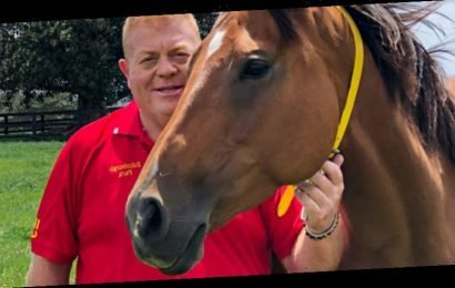 Lifetime guarantee to save horses from slaughter