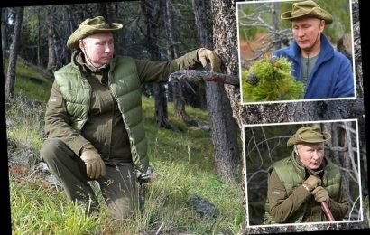 Vladimir Putin poses for hilariously weird pics in a Siberian forest – the latest in a long line of bizarre holiday portraits – The Sun