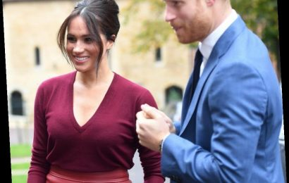 The courtiers are still being sent out to smear Prince Harry & Meghan, shock