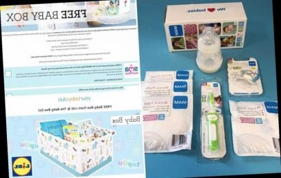 Parents slam 'free' baby boxes from Amazon or Lidl that cost £20 – The Sun