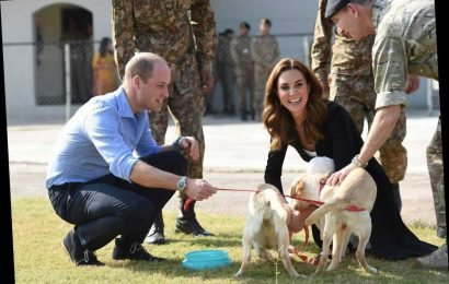 Kate Middleton and Prince William end their Pakistan tour with a visit to army dog centre in Islamabad – The Sun