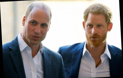 The Reason the Rift Between Prince William and Prince Harry Was Inevitable