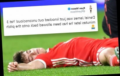 Daniel James was 'acting' when he went down seemingly knocked out, claims Wales boss Ryan Giggs after heavy collision – The Sun
