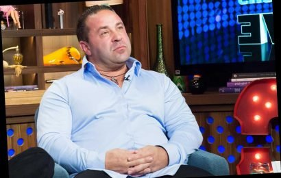 Joe Giudice Leaves U.S. for Italy After Being Freed from ICE Custody Ahead of Deportation Appeal