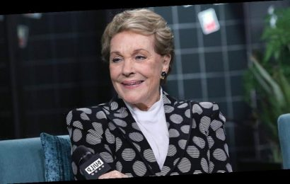 Julie Andrews says she was 'so truly stoned' to accept a role in 'The Wolf of Wall Street': 'I do regret it'