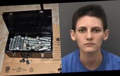 Florida woman arrested after parents find 24 pipe bombs in her bedroom