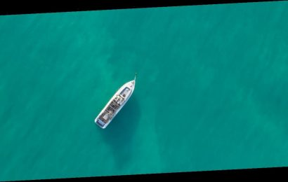 Travellers fight for spot on luxury cruise ship by finding codes in photos