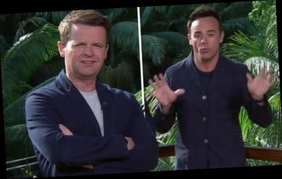 I'm A Celebrity: 'I hate you' Dec Donnelly storms off after Ant clash