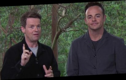 I'm A Celebrity fans concerned as 'accident prone' Dec unveils second injury