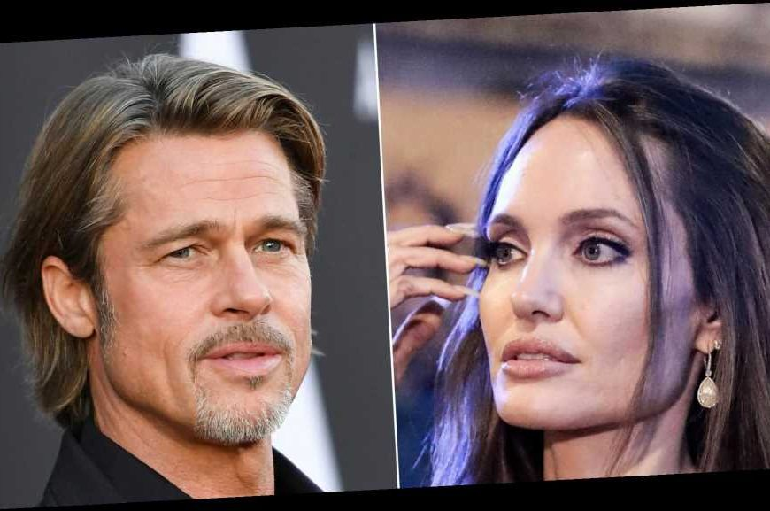 Angelina Jolie Feels Brad Pitt 'Turned' Her and Kids' 'Lives Upside Down'