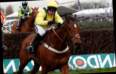 Lostintranslation 'in great form' ahead of acid test in Betfair Chase