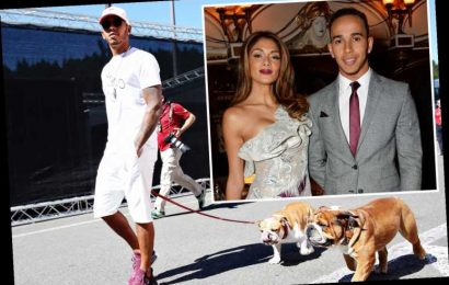 Lewis Hamilton says F1 is too damaging to his love life as he travels so much he struggles to even keep his DOGS alive – The Sun