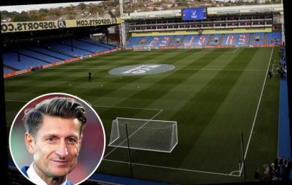 Crystal Palace within weeks of £215MILLION takeover by mystery consortium – The Sun