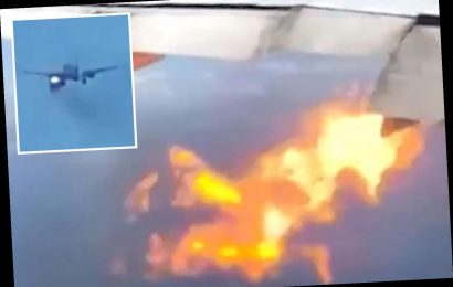 Terrifying moment Philippines Airlines plane's engine bursts into FLAMES as it makes emergency landing at Los Angeles – The Sun