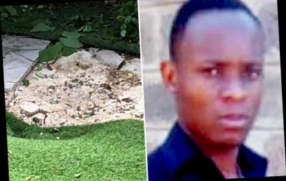 Heathrow stowaway who plunged 4,000ft from jet into Clapham garden is 'Kenyan airport worker'